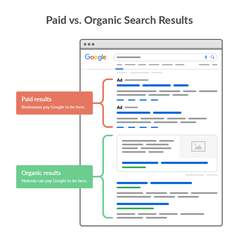 paid vs organic search result