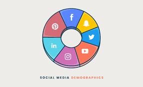 social media demographic 2020